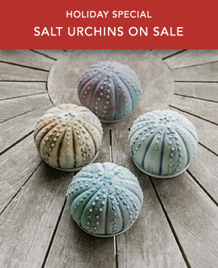 Georgetown Pottery Salt Urchins